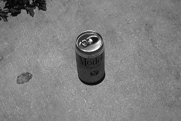 A picture of a beer can sitting on the Tropic of Cancer on June 21, 1991 - the Sun is overhead - no shadow!